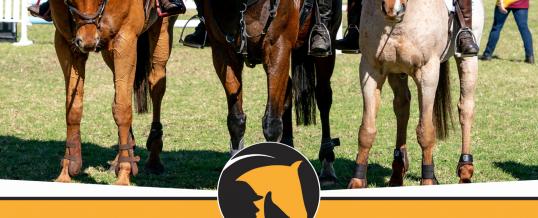 Pony Club WA State Championship Programme